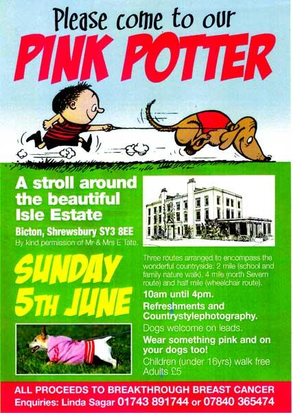 Pink potter